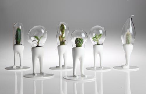 Domsai desk pets attack of the alien bonsai for Unusual bonsai creations