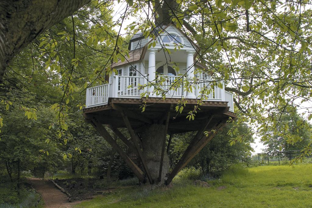 All I Want Is A Treehouse