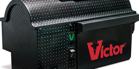 victor1.jpg
