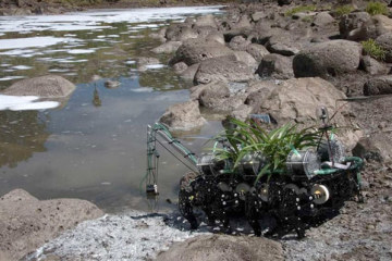 robotplant1