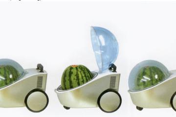 watermeloncooler1