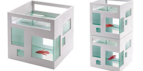 fishhotel1