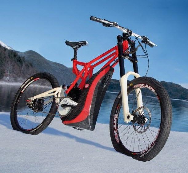 Off road electric bike