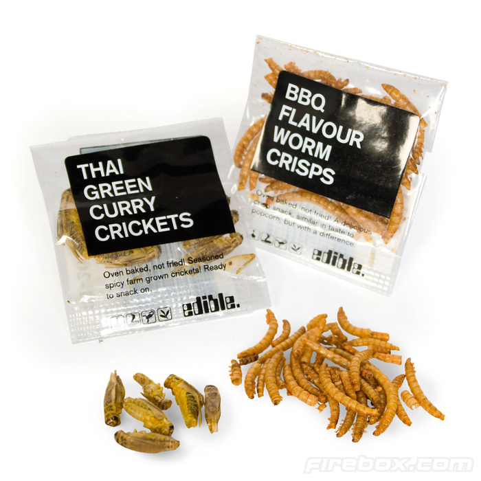 Insect Snacks Let You Munch On Baked Worms And Crickets