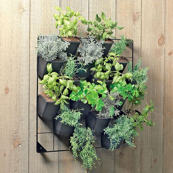 Vertical Wall Garden Mounts Your Potted Plants For Easy Access