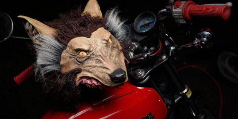 wolfhelmet1