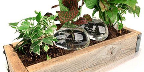 waterstone2