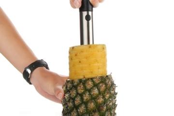 pineapple-corer-1