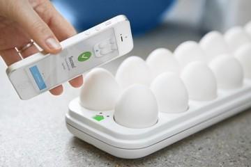 smart-egg-tray