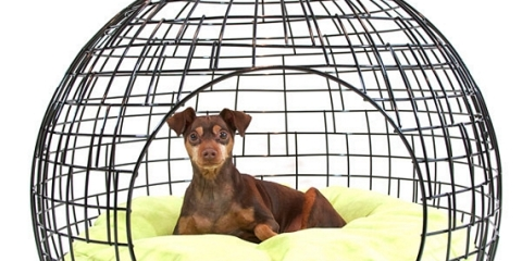 ei2-eiCrate-dog-cage-1