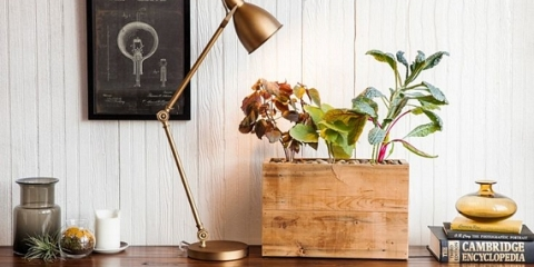 modern-sprout-planter-1
