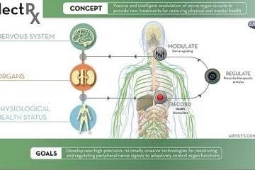 ElectRx-implants-1