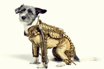 russian-dog-spacesuit-1