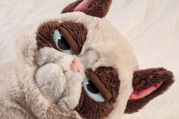 grumpy-cat-gift.jpg