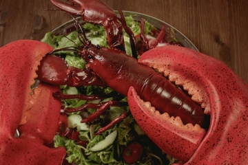 giant-lobster-claws-2