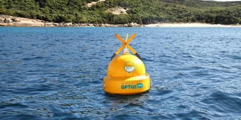 clever-buoy-1