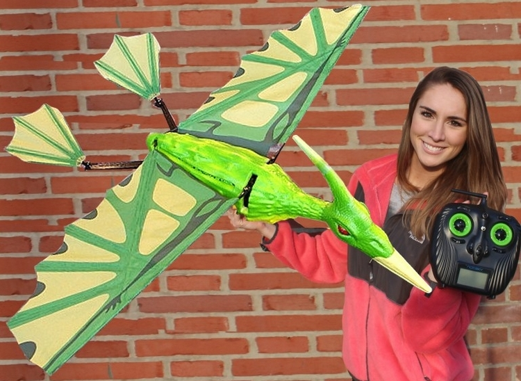 plane toys remote control with Flying Rc Pterodactyl on RainbowdashNL furthermore 160 Piece Arsenal Life Sized Lego Weapons 0123055 furthermore 32220065779 likewise Search moreover 8Th Mad Torque Rock Crawler RTR Orange.