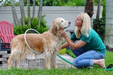woof-washer-360-1