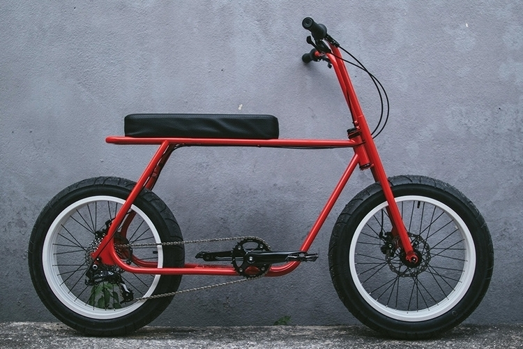 coast-cycles-ruckus-1