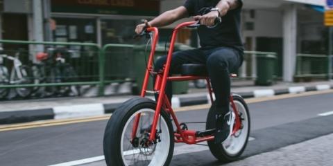 coast-cycles-ruckus-2
