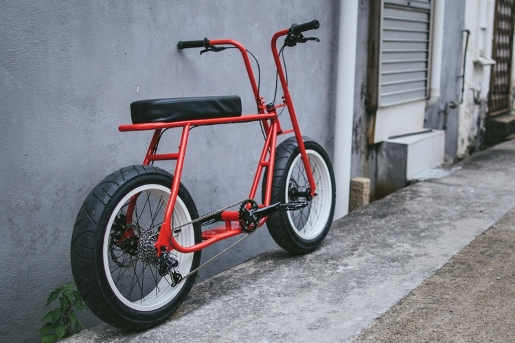 coast-cycles-ruckus-3