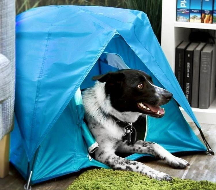 tiny-tent-2