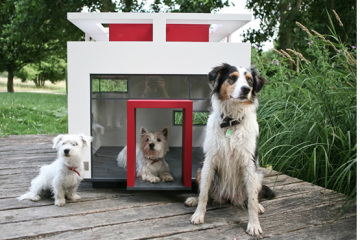 dogmansion1