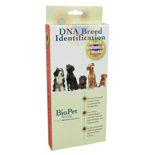 BioPet DNA Breed ID Kit Finds Out Your Dog's Ancestry Like CSI