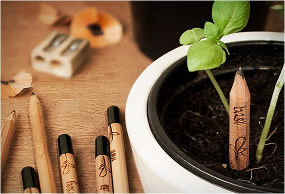 c2c1f37efdc32 Sprout Is A Pencil That Turns Into A Plant