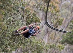 treetop-crazy-rider-1