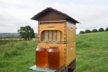 flow-bee-hive-3