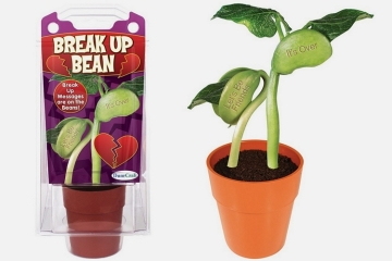 break-up-bean-1