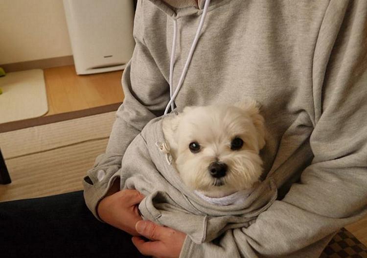 mewgaroo-hoodie-3