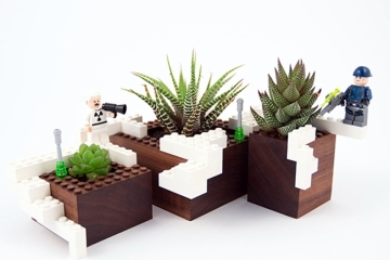 plant-experiment-1-2