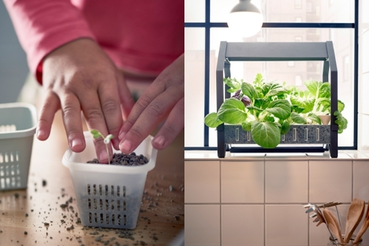 ikea-indoor-gardening-kit-2