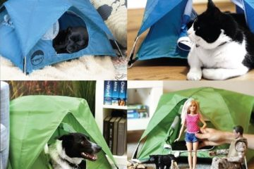 tiny-tent-3