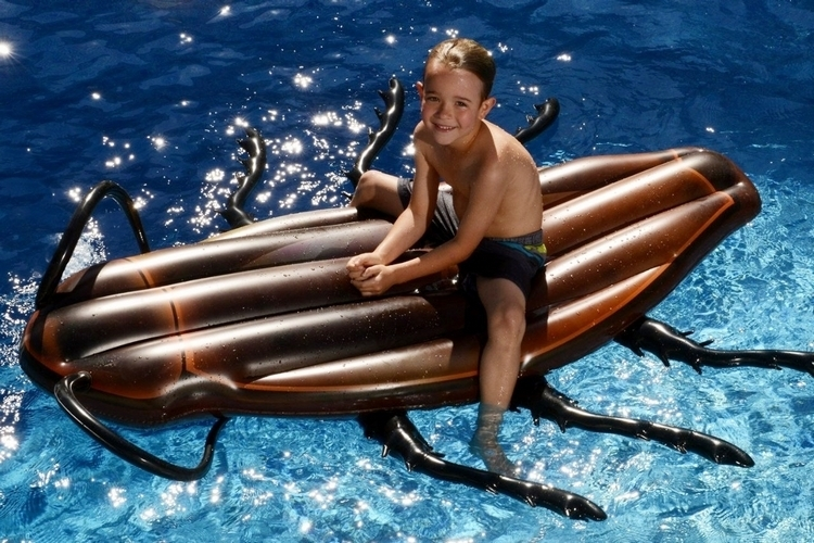 kangaroo-gigantic-cockroach-float-0