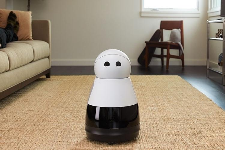kuri-home-robot-1