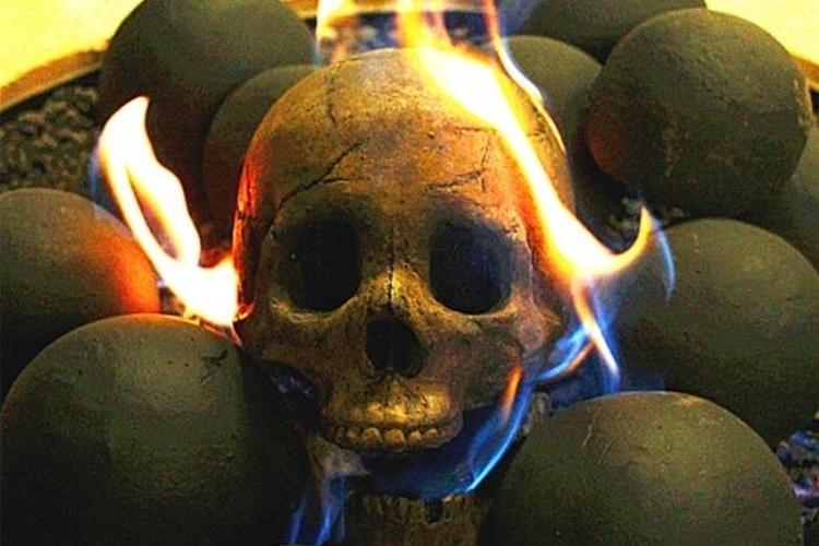 myard-skull-shaped-logs-3