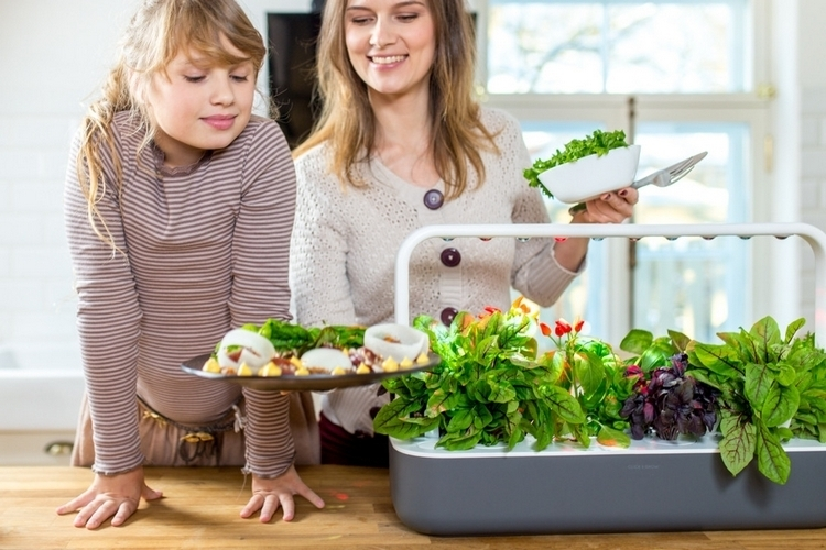 click-grow-smart-garden-9-2