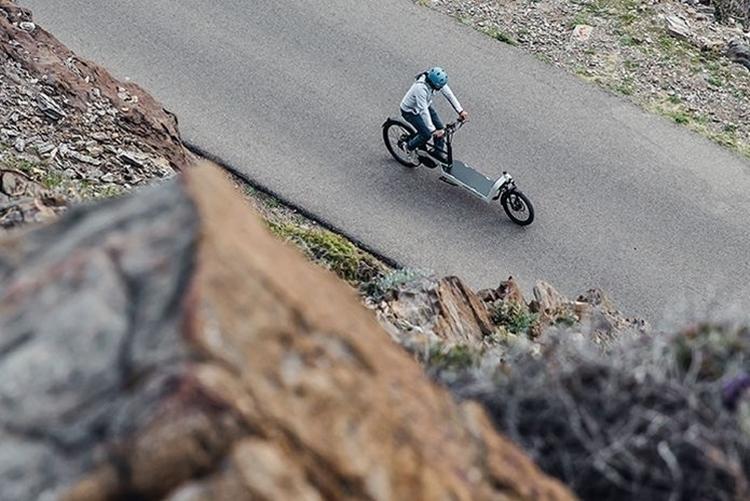 riese-muller-packster-cargo-bike-3