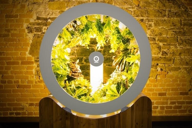 ogarden-indoor-rotating-planer-1
